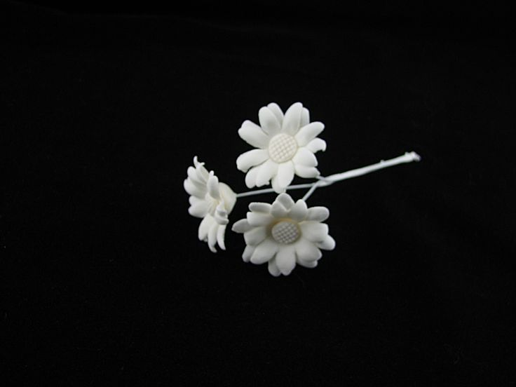 Small daisies (all white)