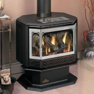 Napoleon GDS50 Gas Stove Direct Vent Stoves