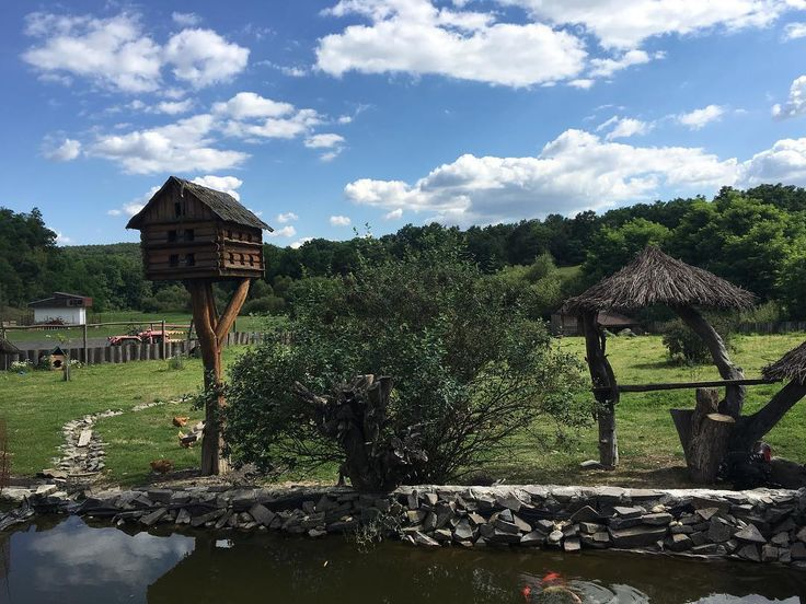 """Small animal """"farm"""" by roadhouse near Krupina Slovakia  ___ #roadhouse #Krupina #Slovakia #Slovensko #nature #sky #clouds #water #trees #landscape #farm #animal #animals #blue #green #pond #nofilter"""