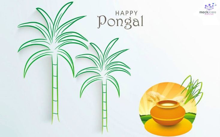 Happy Thai Pongal !!!  #Thaipongal2018 #Macksons #Srilanka #Mackcare