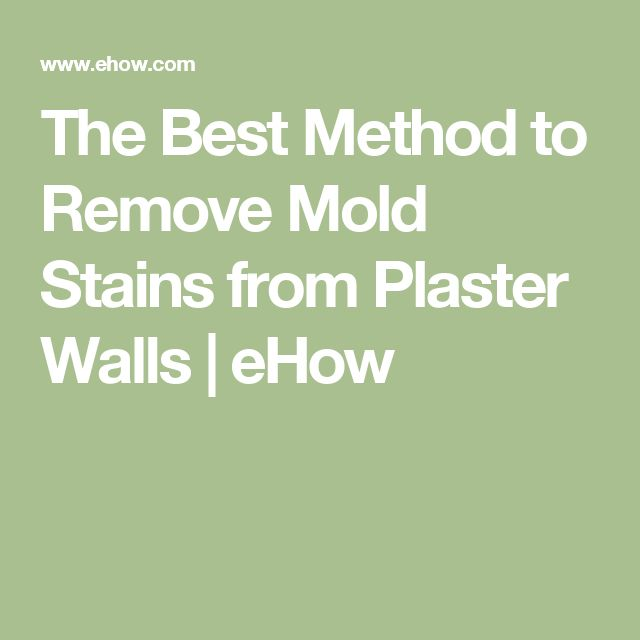 The Best Method to Remove Mold Stains from Plaster Walls | eHow