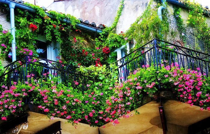 Идеи вашего дома: 20 восхитительных идей озеленения балкона, которые удивят гостей и соседей http://kleinburd.ru/news/idei-vashego-doma-20-vosxititelnyx-idej-ozeleneniya-balkona-kotorye-udivyat-gostej-i-sosedej/