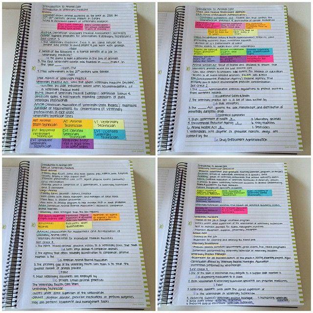Estudos                                                       …