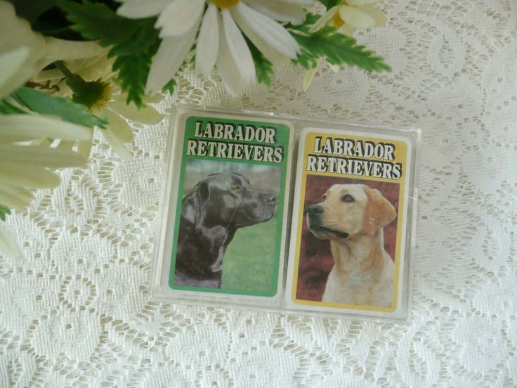 Two Packs Of Vintage Labrador Retriever Photo Playing Cards In Box