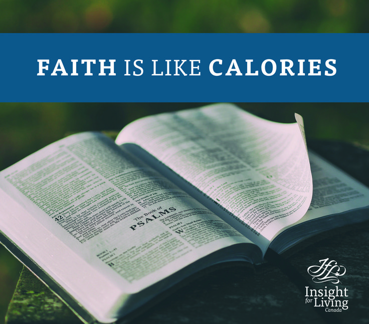 Someone has said faith is like calories—you can't see them, but you can certainly see the results! Living a deep and consistent walk with Christ requires your time and attention, every day.  #deeper, #walk, #biblestudy, #jesus, #wordstoliveby, #church, #faith, #Christian, #wisdom