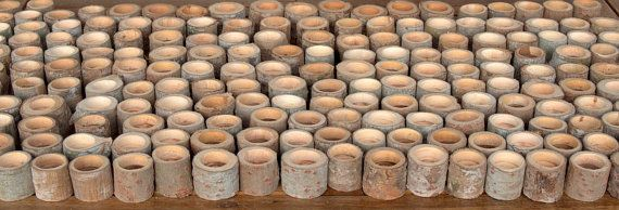 New  Tree Branch Candle Holders   Set of 100  Wood Candle