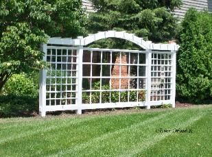 Trellis and Lattic Garden : Gardening Landscaping : Trellis designs great fro screening, providing height for privacy, growing vines. Makes a great backdrop for a garden focal point like a fountain or planting bed. :: Bower Woods llc.