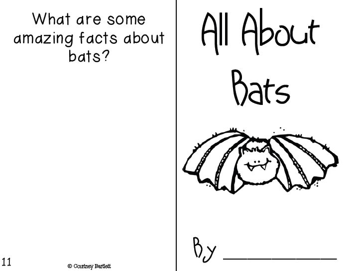 48 best Bat Crafts & Activities For Kids images on