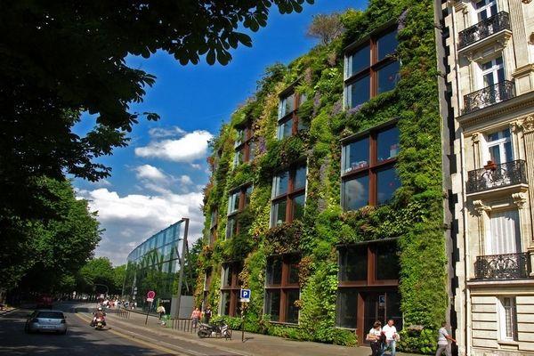 OAS1S : un projet d'oasis urbaine végétale