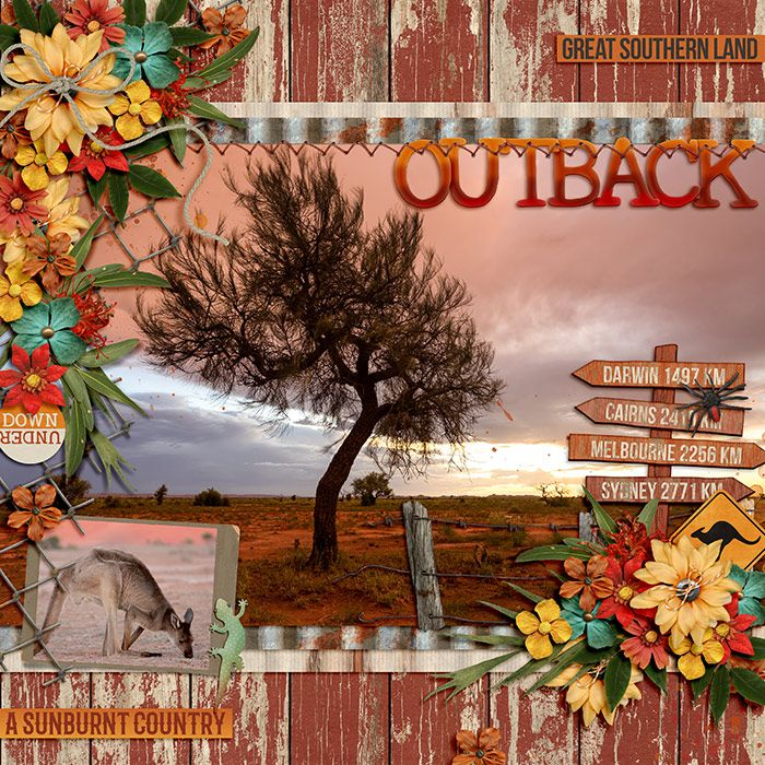 DSI-Outback-29July