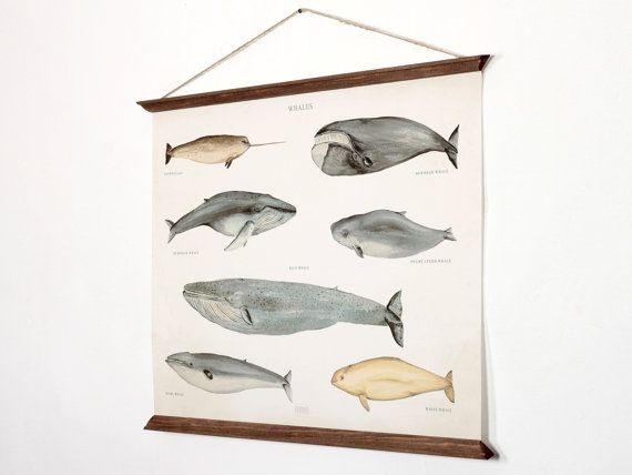 A2 Whales Poster Canvas medium size handmade vintage by ARMINHO