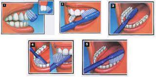 les dents maternelle - Recherche Google