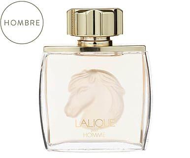 Agua de colonia Lalique Pour Homme Equus -75 ml