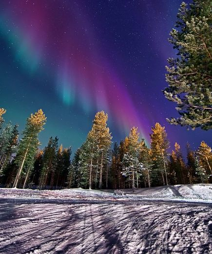 A multicolored blade of light seems poised to strike over a snowy forest in Ivalo, Finlandon January 22 2012