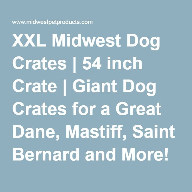 XXL Midwest Dog Crates | 54 inch Crate | Giant Dog Crates for a Great Dane, Mastiff, Saint Bernard and More!