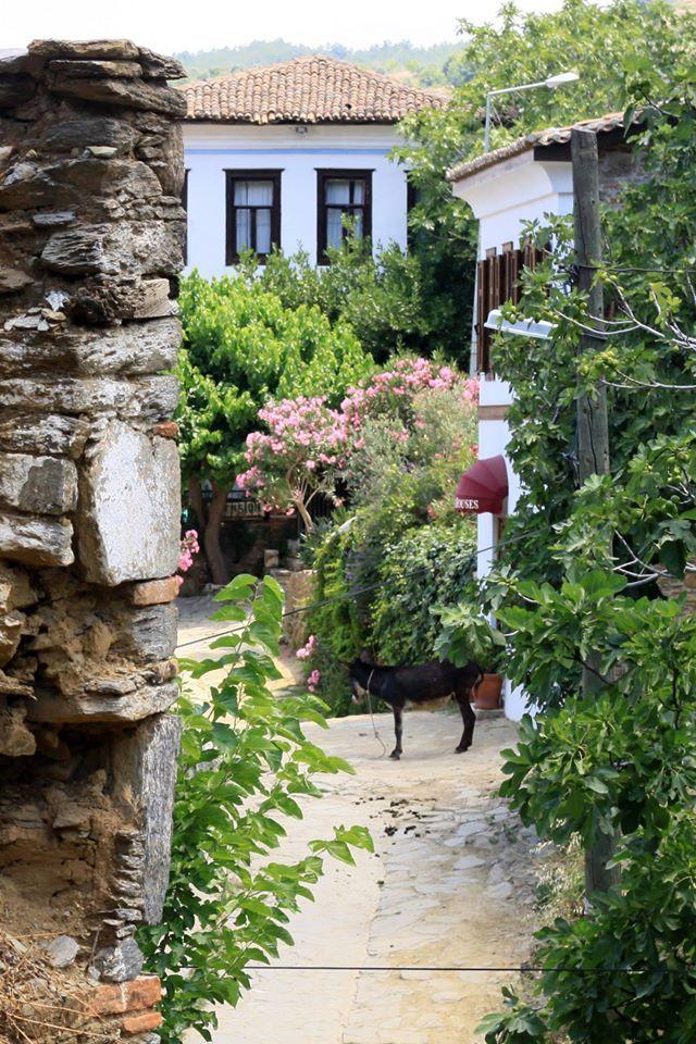 H.C.I. İzmir-Şirince