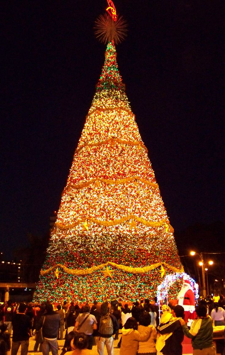 Guatemala City Christmas Tree Lighting - This is so on my bucket list!!!!!!!