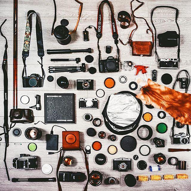 """Меня часто (очень часто) спрашивают, на что я снимаю. Начну нудеть с того, что сначала я снимала вообще на видеокамеру Панасоник с разрешением 640х480, и была довольна. Чего-то даже умудрялась обрабатывать. Поэтому прежде чем задаваться вопросом поиска самой лучшей камеры в мире с кнопкой """"шедевр"""" посередине, рекомендую к прочтению книгу Александра Лапина """"Фотография как..."""". А потом решите, надо ли вам вообще что-то . Ну а для фанатов всяких железячек и стеклышек с пластмассками, вот список…"""