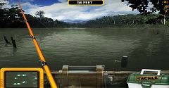 Best fishing games online