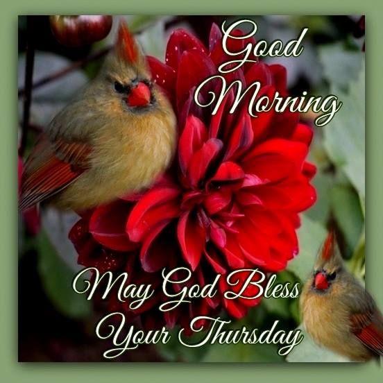 Good Morning. May God Bless Your Thursday.