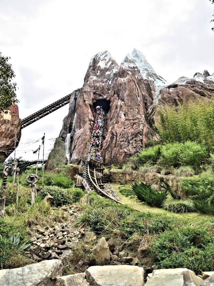 Expedition Everest - Animal Kingdom