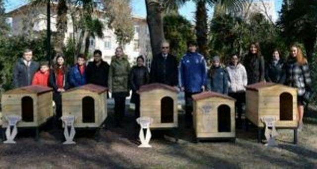 ÇANAKKALE'deki İsmail Kaymak Ortaokulu öğrencileri sokak hayvanları köpek kulübeleri hazırladı.