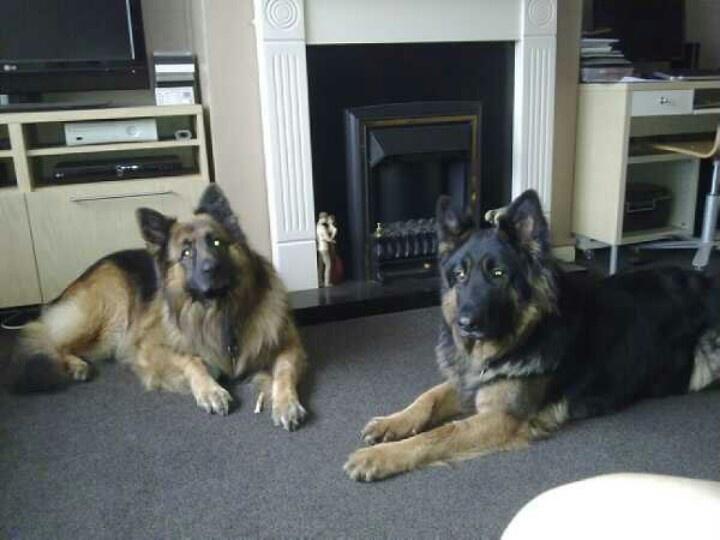 My 2 boys x