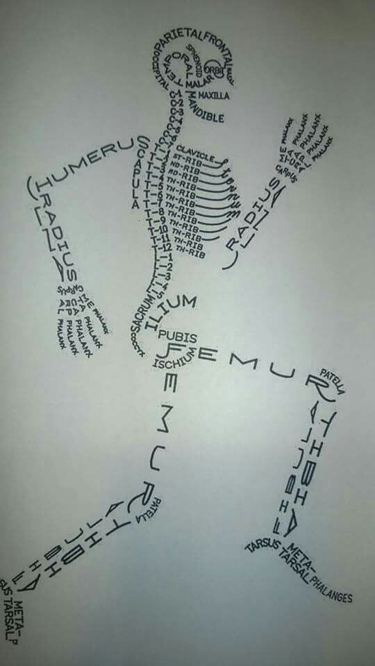"""I really like this visual because it is a creative way of using the words describing parts of the body to create a skeleton. We could make collages of words to look like objects in the book, like making an """"M"""" for McLean out of words people use to describe the year.:"""