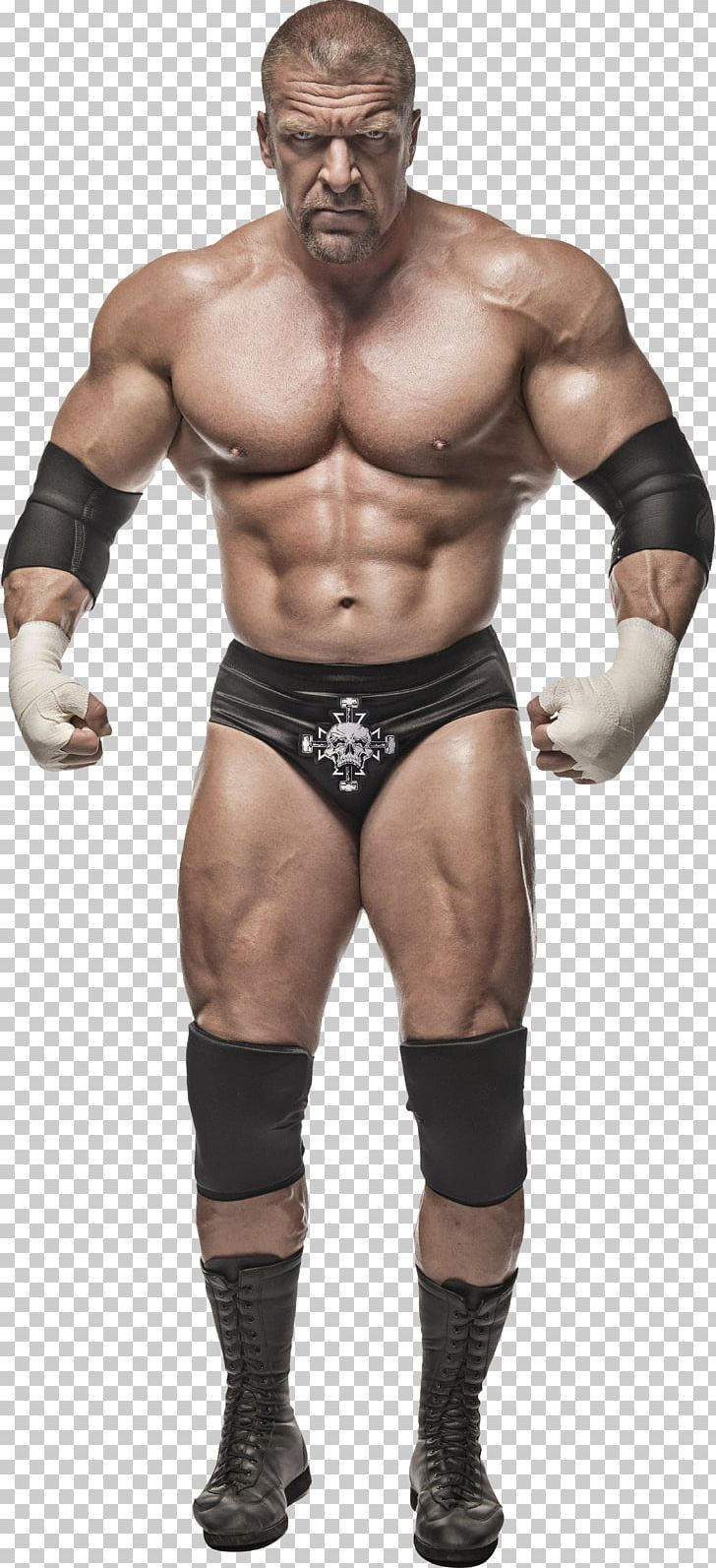 Triple H World Heavyweight Championship Wrestlemania 29 Wwe Championship Wwe Superstar World Heavyweight Championship Wwe Superstars Wwe Superstar Roman Reigns