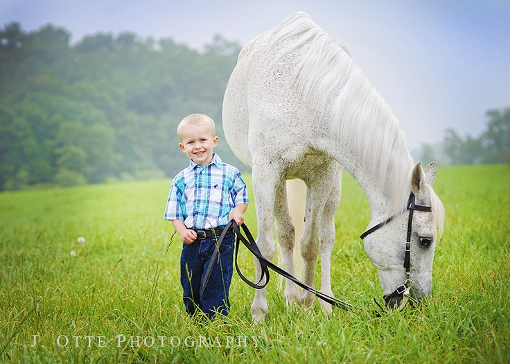 Stealing Photos – wretched problem for photographers!  This one involves Equine Land Conservation Resource » Jodie Otte Baltimore & Harford County Newborn Baby Photographer