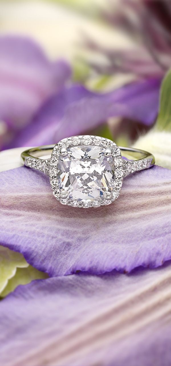 A beautiful cushion cut halo ring.