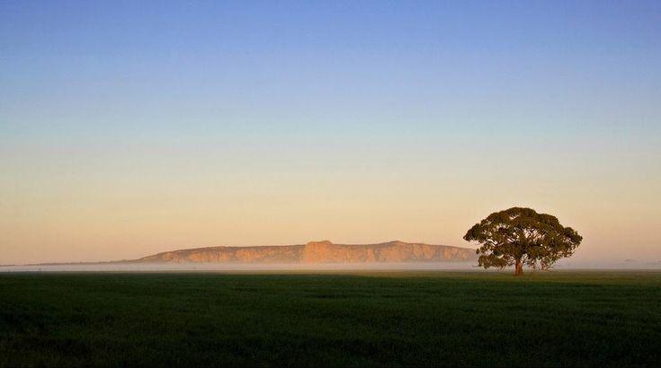 Mt. Arapiles, near Horsham in north-western Victoria.