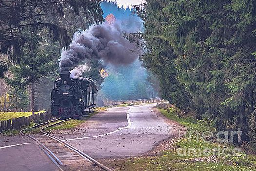 The narrow gauge railway - Romania by Claudia M Photography
