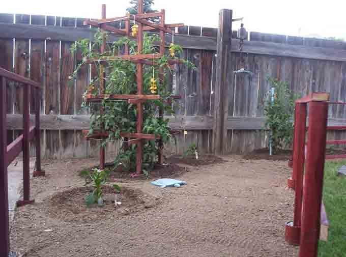 earthbox trellis Wooden Trellis 300x222 Another Trellis