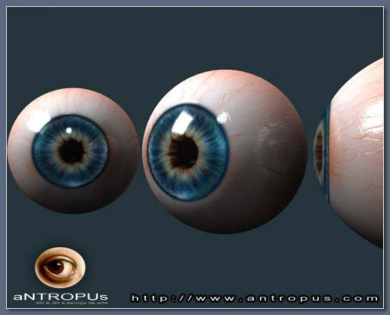 Realistic Eye Modeling for 3D Characters - Page 1 - Free Polygon Modeling Tutorials for Maya