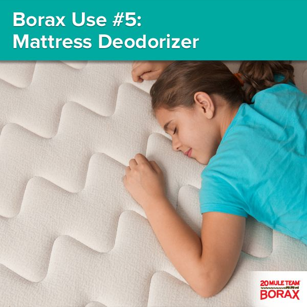1000 Images About Borax Uses On Pinterest Stains Steam