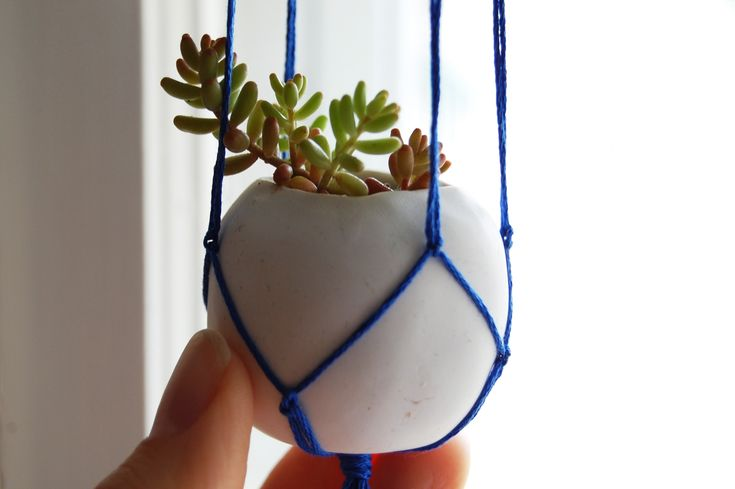 Hanging version of my tiny polymer clay plant pot tutorial: Plants Can, Clay Projects, Clay Plants, Kids Projects, Hanging Plants, Apartment Therapy, Diy Planters, Polymer Clay, Clay Pots
