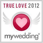 Fort Worth Wedding DJ, Fort Worth Wedding Disc Jockey, DJs and Disc Jockeys