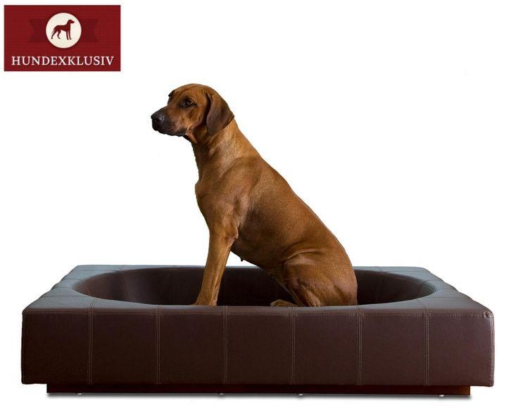 Luxus Hundebett Leder  Exklusives Design und Liegekomfort im Einklang mit dem dunkelbraunen Luxus Hundebett Leder. Das edle Möbelstück ist eine perfekte Ergänzung für das gehobene Ambiente und ein idealer Rückzugsort für den Vierbeiner.  http://www.hundexklusiv.de/Hundebetten/Hundebetten-Leder/Luxus-Hundebett-Leder::1039.html