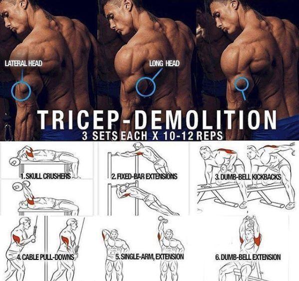 Tricep Demolition! Hardcore Triceps Muscle Training Plan #BigMuscleTraining