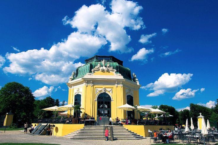 Geburtstagsfeier im Tiergarten Schönbrunn - GratisGeburtstag