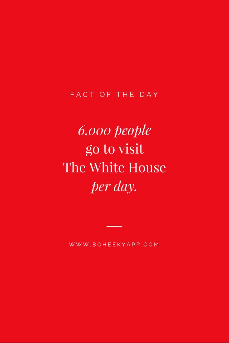 Fact of The Day #DYK #Fact #bCheeky App