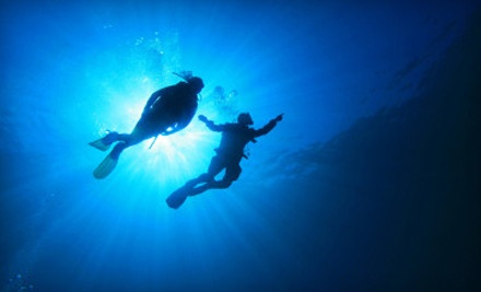 $399 Scuba Diving Certification  http://www.groupon.com/r/uu17304941