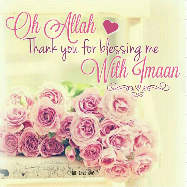 529 best alhamdulillah images on pinterest alhamdulillah allah islamic quotes pretty alhamdulillah thankful muslim thecheapjerseys Choice Image
