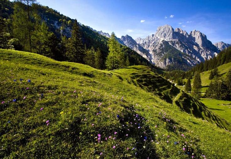 Nationalpark Berchtesgaden - ein Paradies für Mensch und Tier! Einst sollte mit dem Nationalpark der Natur ein Rückzugsgebiet geschaffen werden, heute erfüllt er zahlreiche Aufgaben rund um Naturschutz, Forschung, Erholung und Bildung. Die Naturschutzzone mit circa 21.000 Hektar ist ein unberührter Fleck Natur, in den der Mensch nicht eingreift.