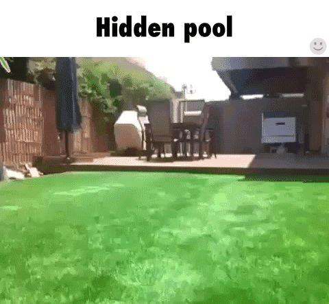 pool GIF