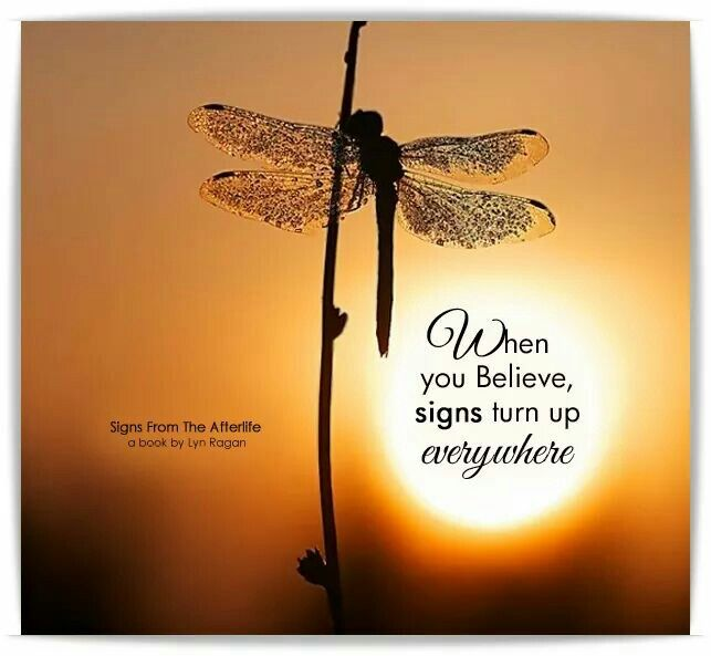 I miss you & enjoy all the beautiful dragonflies that stop by to say hello! ♡
