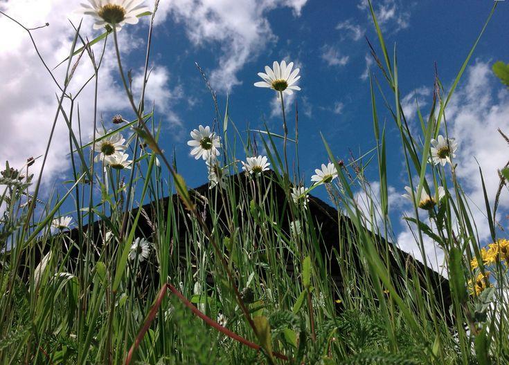 #Weekend #romantico all'ombra del #MonteRosa: scopri la #natura e i #sapori della #Valsesia http://ow.ly/NquA2
