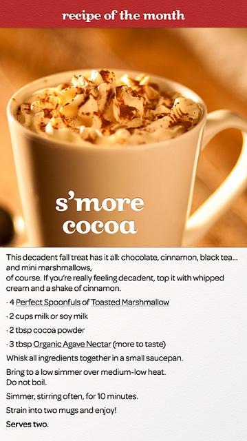 S'more Cocoa by DAVID'sTEA, via Flickr
