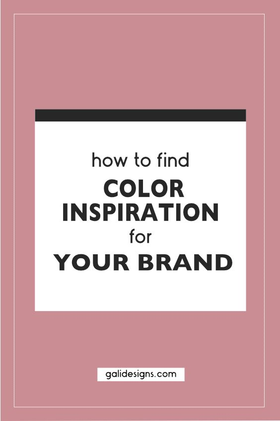 It could be overwhelming to come up with a branding color combo. I'll show you how and where I find color inspirations for my clients